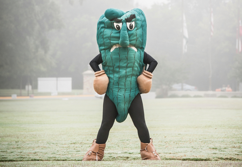 myfarmlife.com||https://myfarmlife.com/farmstead/fun-farm-related-college-mascots-fear-the-okra/