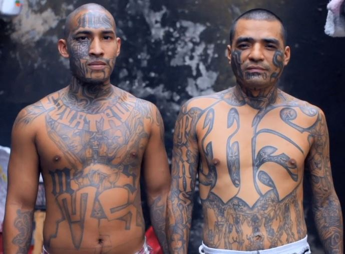mara salvatrucha essay Mara salvatrucha ms-13 research proposal pages: 9 (2273 words) | style: n/a ms-13 and international terrorism the mara salvatrucha or ms-13 gang has been committing acts of terror for.